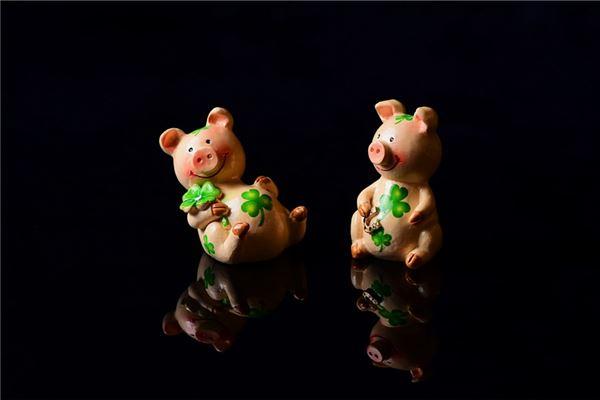1983年属猪人2021年运势及命运 39岁生肖猪在牛年每月运程如何