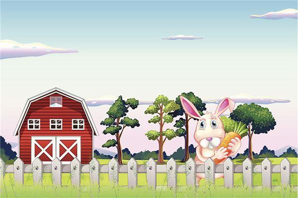 1975年属兔2020年运势