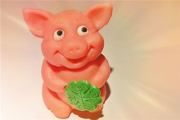 哪个时辰属猪的财运好